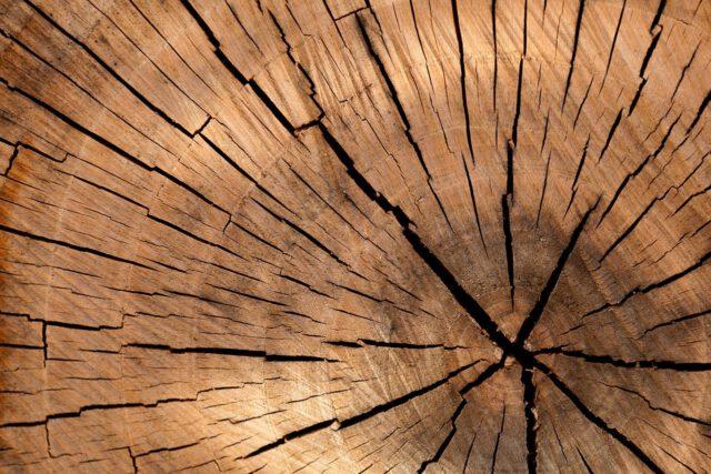 Jak zadbać o meble drewniane?